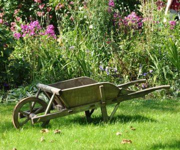 Comment louer un jardin potager à Pau
