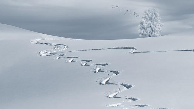 Combien de temps pour aller de Pau au ski