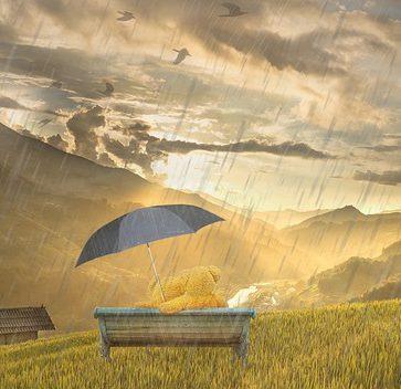 Que faire à Pau quand il pleut